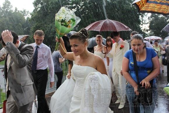 Как Петербург отметил День семьи, любви и верности (фоторепортаж): Фото
