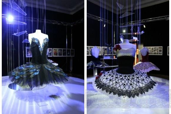 В Петербурге открылась выставка, посвященная Диане Вишневой: Фото