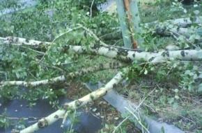 На Ремесленной улице ураган разрушил автобусную остановку