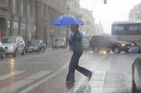 МЧС: 4 июля в Петербурге ожидаются гроза и сильный ветер