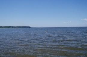 На Ладоге зацвёл фитопланктон