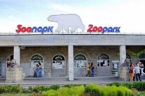 Мартышек Шмидта и попугаев Жако арестовали и отдали в Ленинградский зоопарк