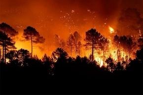 Архангельская область все еще горит