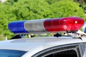 Дебошир натравил питбуля на полицейского