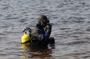 В Ижорском пруду спасли тонущего