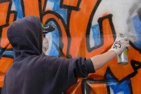 На Заневском поймали уличного «художника»