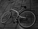 Изобретатель велосипеда-трансформера «Кузнечик» даст покататься каждому: Фоторепортаж