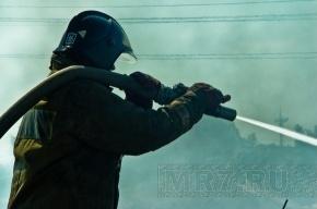 На проспекте Энгельса горит завод лампочек