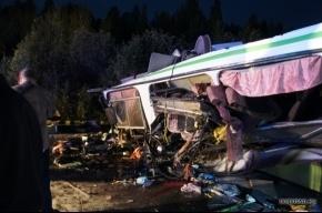В ДТП из-за лося  погибли пять человек