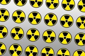 Житель Швеции пытался построить на кухне атомный реактор
