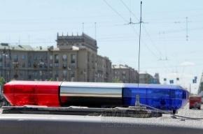 Петербургская полиция разогнала акцию националистов