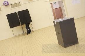 Муниципальные выборы в Петербурге: адреса голосования