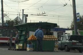 Петербургская полиция изъяла 900 кило арбузов и дынь