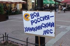Защитники лесов провели пикет на Малой Садовой