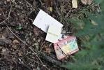 На Поклонной горе карманники выкидывают ненужную добычу: Фоторепортаж