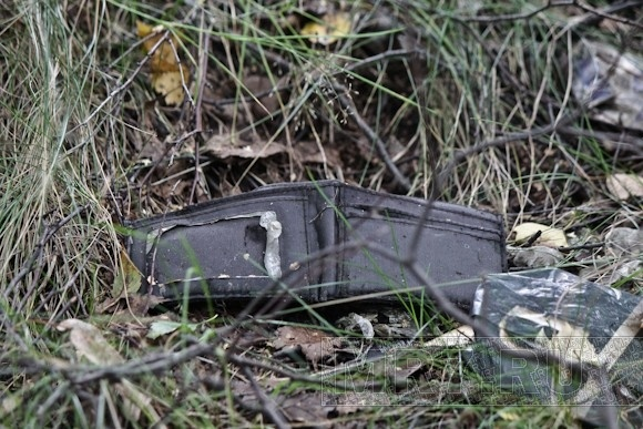 На Поклонной горе карманники выкидывают ненужную добычу: Фото