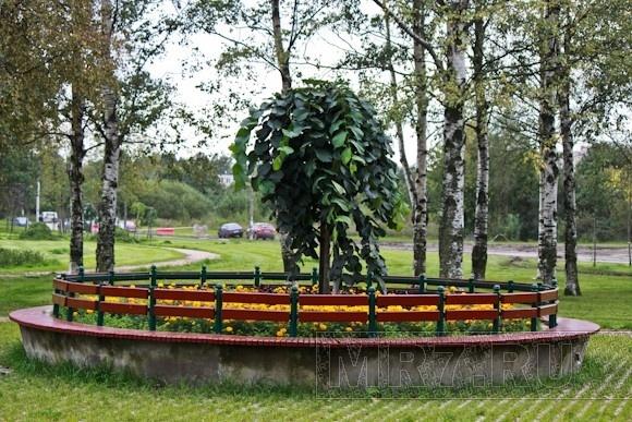 В Калининском районе открылся новый парк: Фото