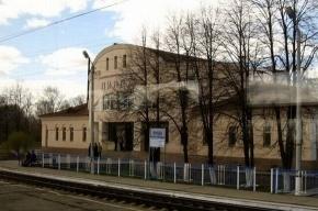 Поезд задавил пятерых под Нижним Новгородом