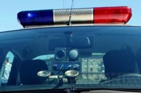 В Купчино водитель сбил на переходе мать с ребенком и уехал