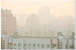 МЧС: туман в Ленобласти может привести к авариям и травмам