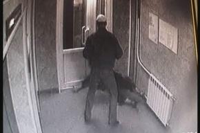 В Петербурге поймали грабителя, нападавшего на женщин в парадных