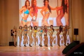 В Петербурге прошел фестиваль красоты (фото)