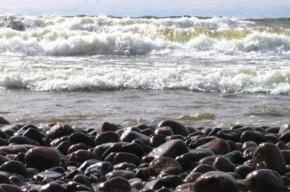 В Финском заливе и Ладожском озере ожидается шторм