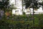 Фоторепортаж: «Жители Центрального района Петербурга соревнуются в благоустройстве дворов»