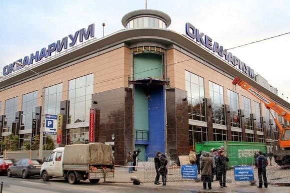 В петербургском океанариуме установили новый 7-метровый аквариум: Фото