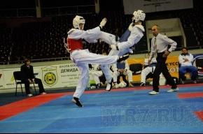 В Петербурге прошел фестиваль боевых искусств (фото)