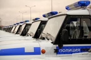 Петербургских полицейских научат толерантности