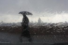 Петербургская погода на выходных: в субботу дождь, в воскресенье без осадков