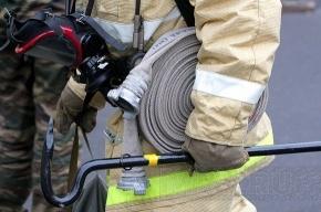 В Купчино серьезно обгорела при пожаре женщина