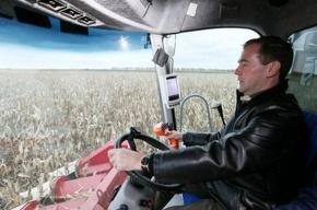 Медведев и Путин помогли «Родине» убрать кукурузу