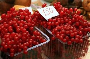 Ярмарка урожая на Сытнинском рынке (фото)