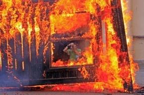 В Красноярском крае  девять человек сгорели заживо