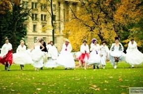 Невесты приглашают петербуржцев станцевать на Малой Садовой