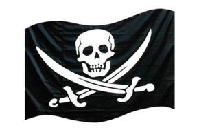 Предпринимателя будут судить за пиратские диски