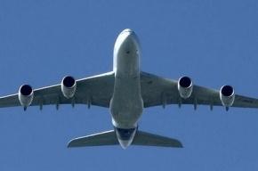 Пилота  и стюардессу сняли с рейса из-за употребления марихуаны
