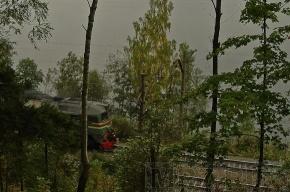 Спасатели нашли тело Николая Горбача на Ладоге