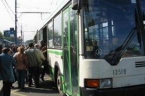 Из Колпино к «Звездной» повезут четыре  автобуса большой вместимости