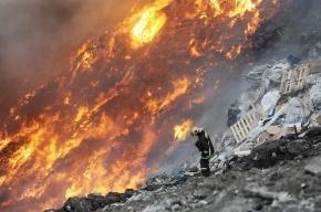 Прокуратура Ленобласти требует возбудить уголовное дело по факту пожара на свалке