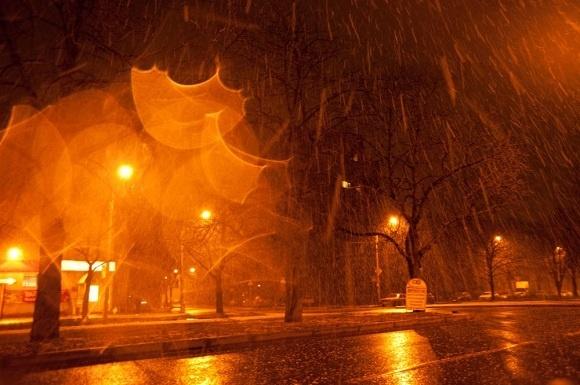 Утренний cнег: Фото