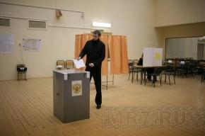 Петербургские эсеры потребовали отмены итогов выборов в городской парламент
