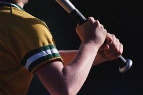 Эколога из Ленобласти избили бейсбольной битой