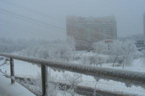 Москву завалило снегом