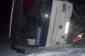 Автобус вез детей к деду Морозу и влетел в кювет