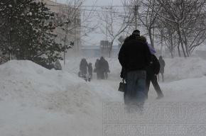 Завтра в Петербурге опять будет штормовой ветер