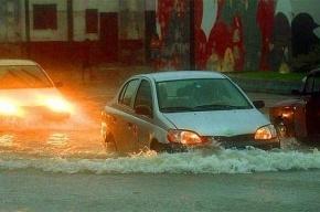 Пятая часть Петербурга могла уйти под воду