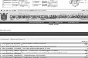 Чудеса на выборах в Петербурге: как менялись данные протоколов (фото)